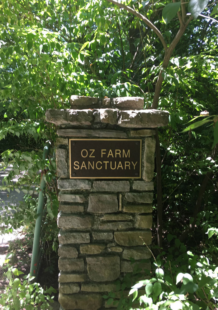 The stone marker at the driveway holds a sign that says Oz Farm Sanctuary.